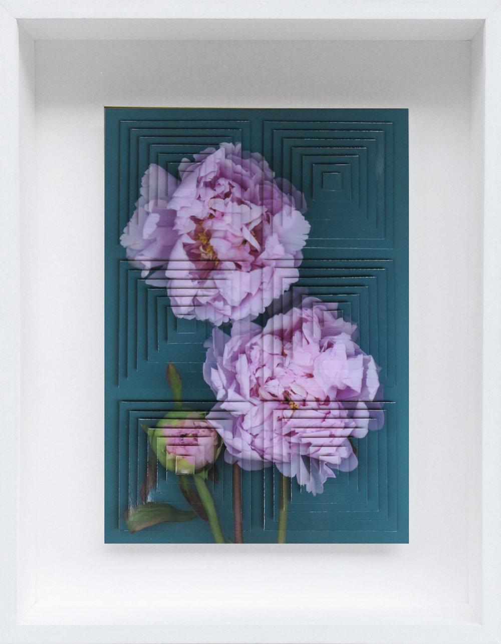 6. Galleria-l'Affiche_Alfred-Drago-Rens_Fiore (18)_2015 - 33,2x25,7 cm.jpg