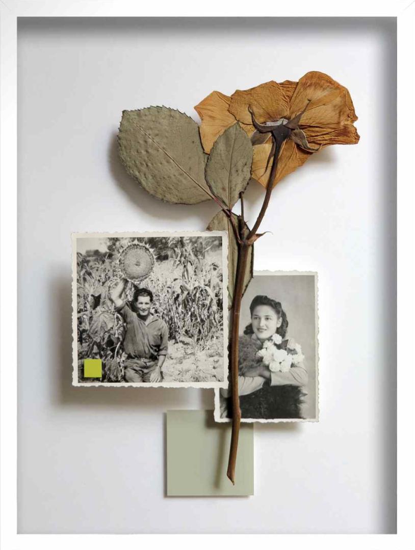 29. Galleria-l'Affiche_Alfred-Drago-Rens_All'ombra-del-mio-piccolo-sole_2016_39x31,5cm.jpg
