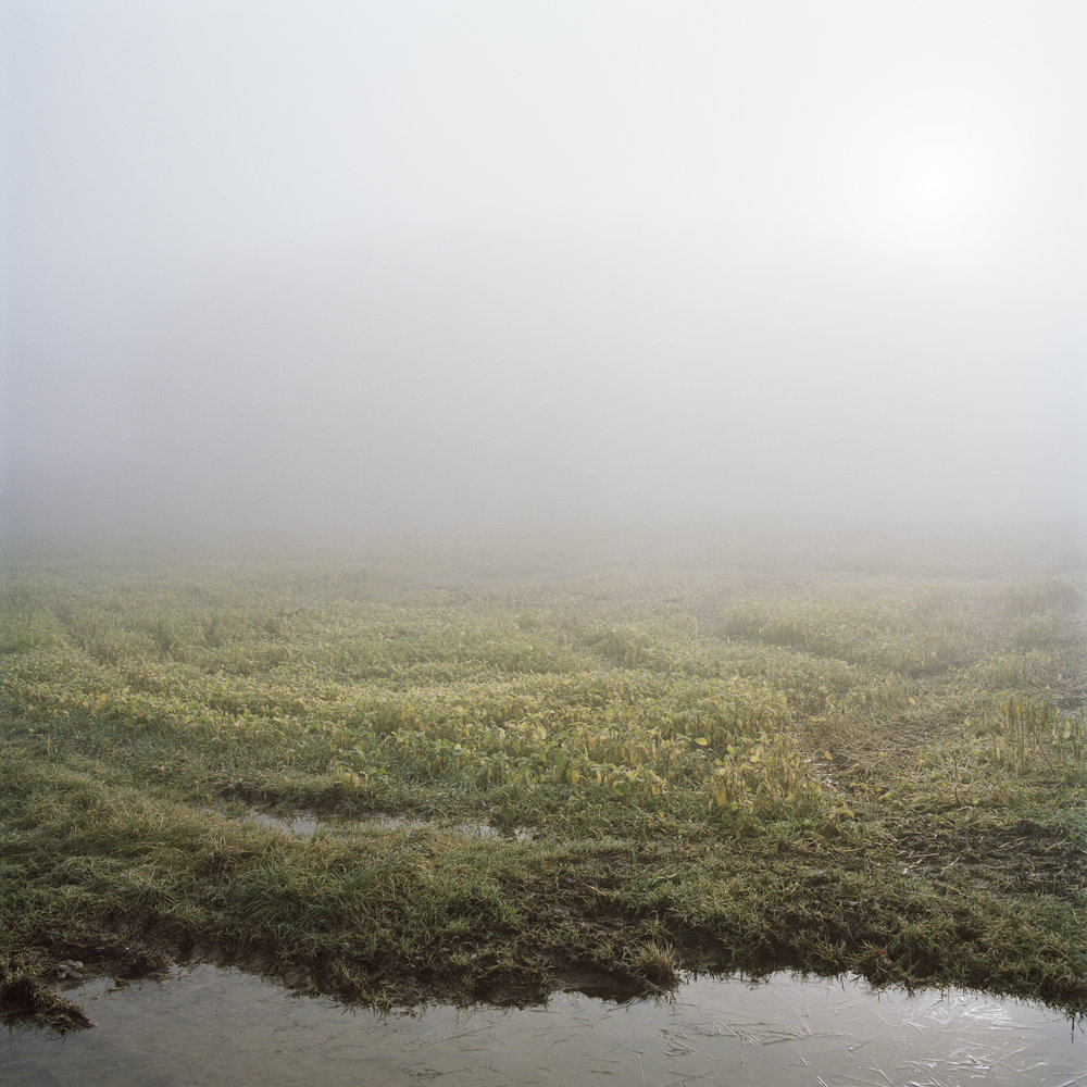 Flierl_brouillard1.jpg