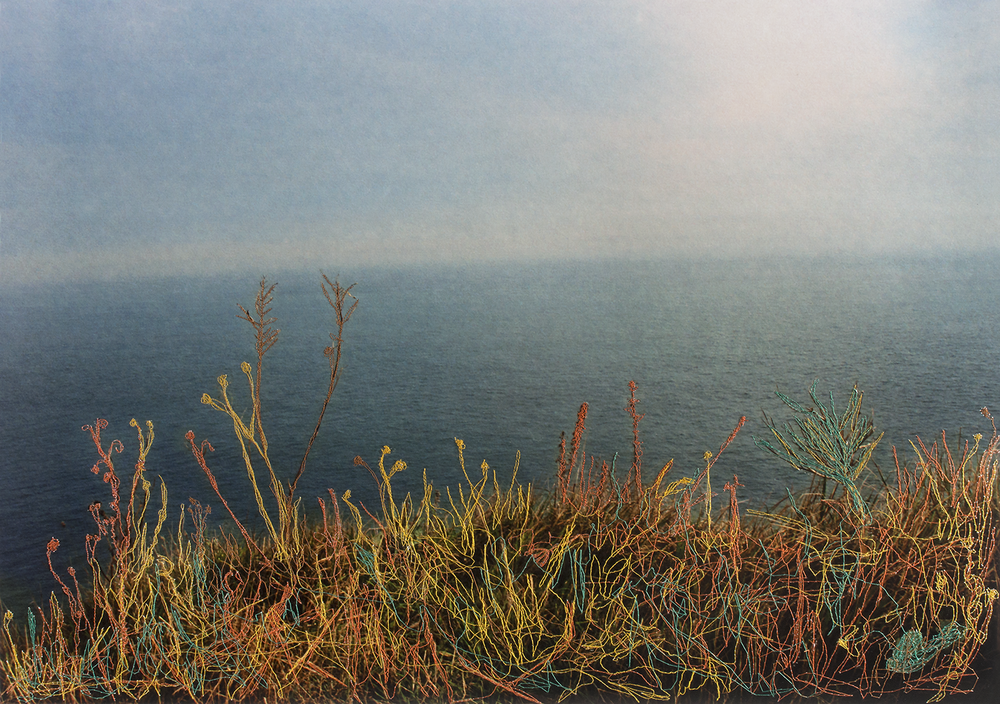 improbable landscape #51_2015_fineart paper+sewn 84x64.png