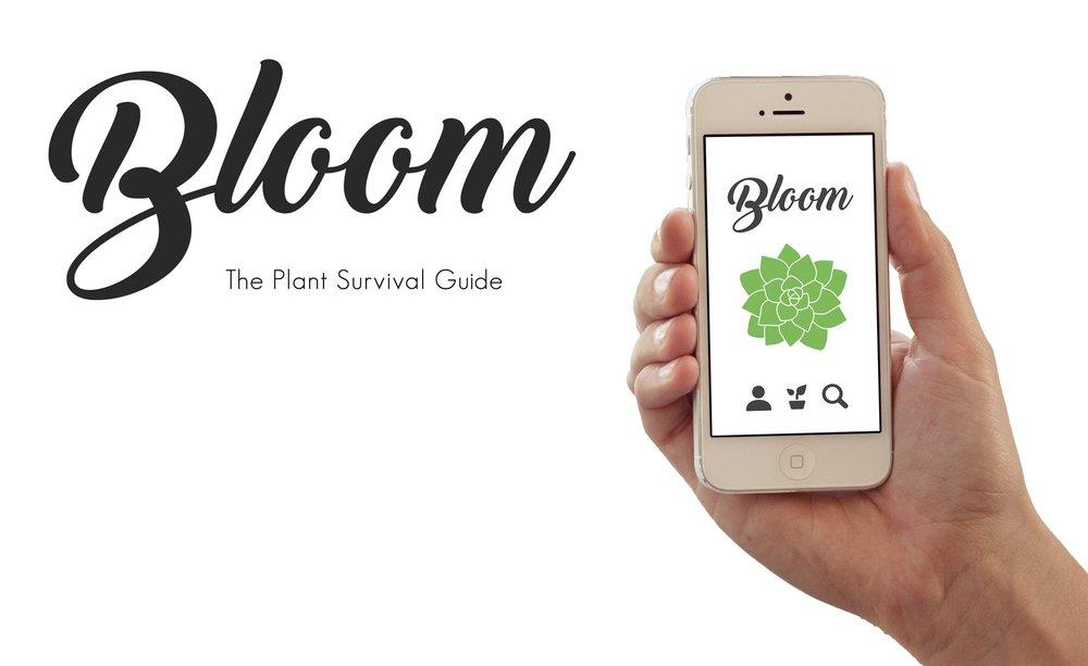 BLOOM-WEB.jpg