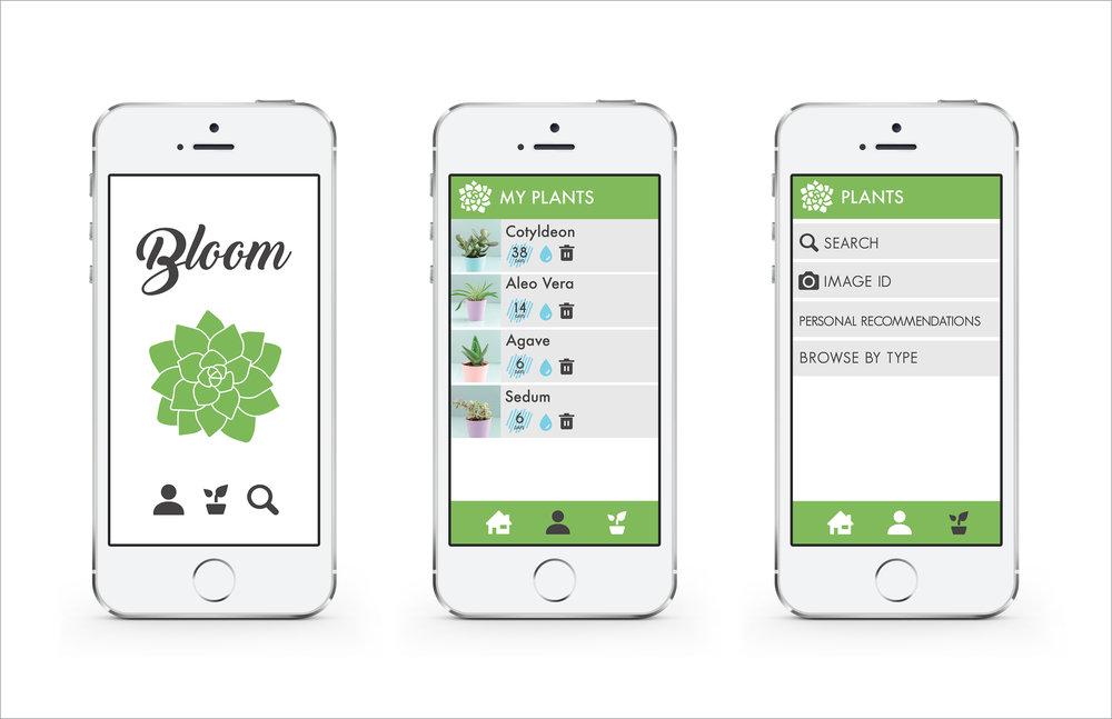 BLOOM-WEB14.jpg