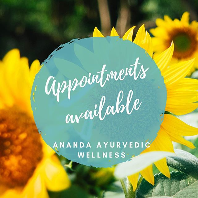 Happy Sunday everyone! Hope you've been enjoying a beautiful weekend✨ ~~~ Appointment times available this week - Monday, Thursday, Friday ~~~ Book in for a blissful abhyanga (Ayurvedic massage), shirodhara, netra basti, kati basti and more! ✨ ~~~ DM or contact me on 0431257866 to make a booking or more information. ~~~ #booknow #ayurveda #ayurvedichealing #blissfulbeing #askandrea #anandaayurvedicwellness