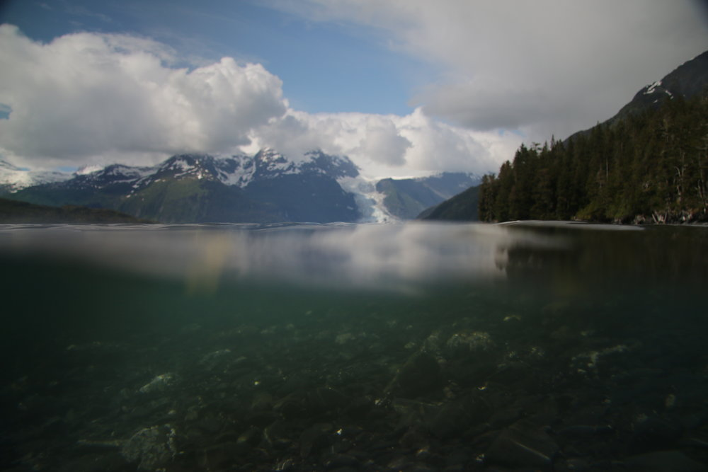 Through the water of Prince William Sound towards Herriman Fjord.
