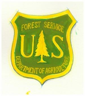 USFS painted logo.jpg