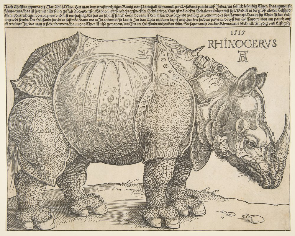 Albrecht Drer's 1515 woodcut of an Indian Rhinoceros. This image served as the archetype for how rhinos were thought to look. It was copied extensively and, with each duplication, the new artist added or omitted key details. Scientific illustration works the same way. If each new illustration didn't go to or rely on the source material or information, it would simply be based on the images that came before it and slowly, slowly corrupted.