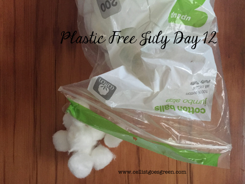 Plastic Free July Day 12: What to do about disposable products that are hanging around? | Cellist Goes Green