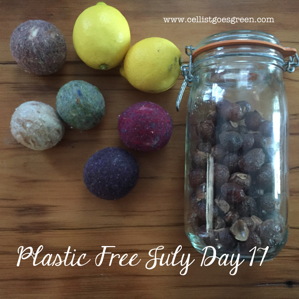 Plastic Free July Day 17: Easy laundry switches | Cellist Goes Green