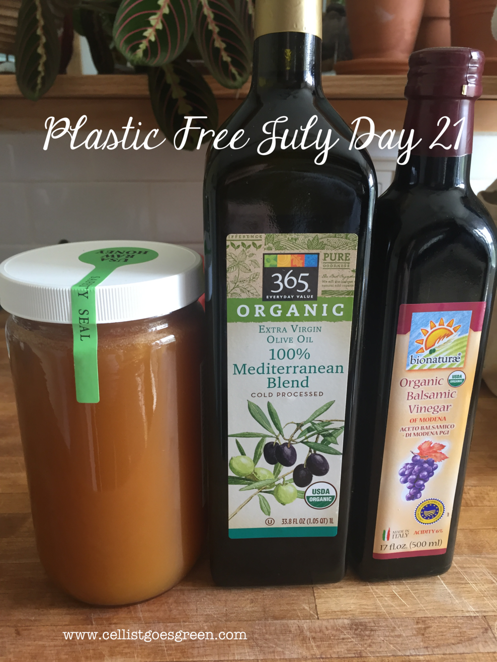 Plastic Free July Day 21  | Cellist Goes Green