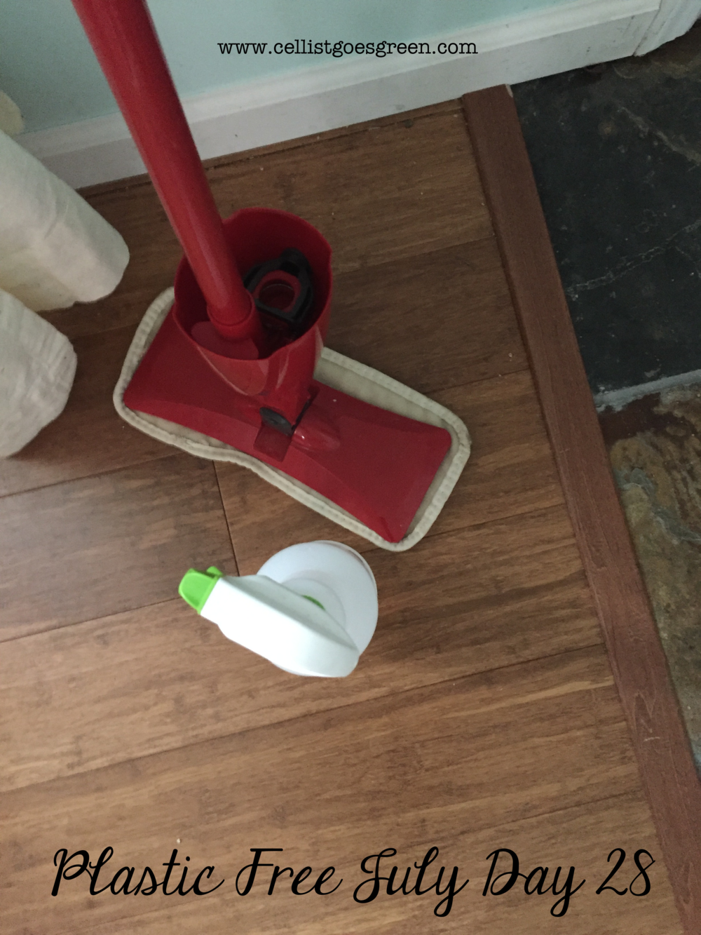 Plastic Free July Day 28: Mopping without disposable plastic | Cellist Goes Green