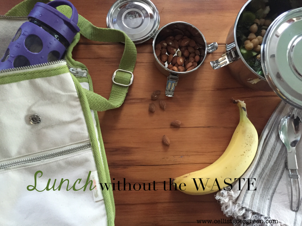 Lunch without the waste: How to reduce disposable packaging, and pack a nutritious lunch everyday | Cellist Goes Green