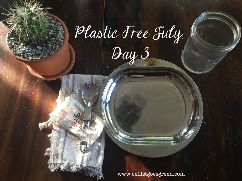 Plastic Free July Day 4: Refusing Plastic Dinnerware | Cellist Goes Green