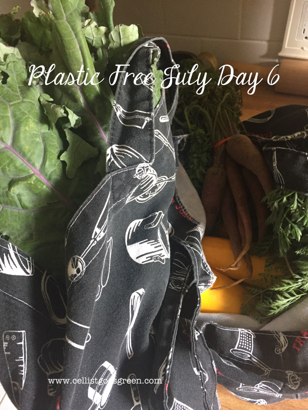 Plastic Free July Day 6: Utilizing the farmers market | Cellist Goes Green