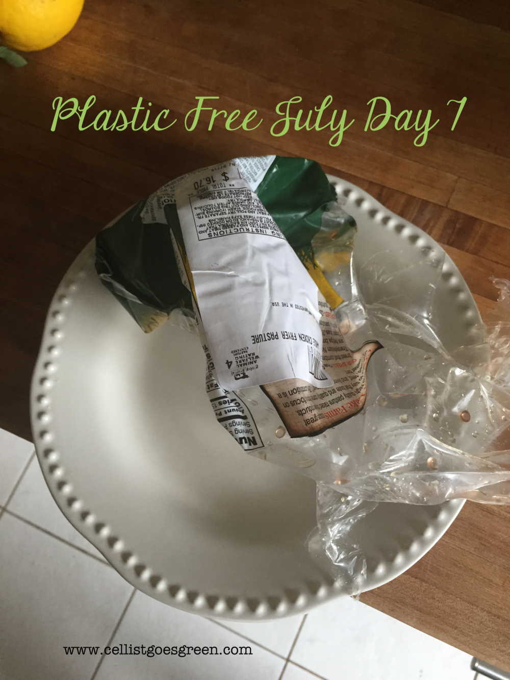Plastic Free July Day 7 | Cellist Goes Green
