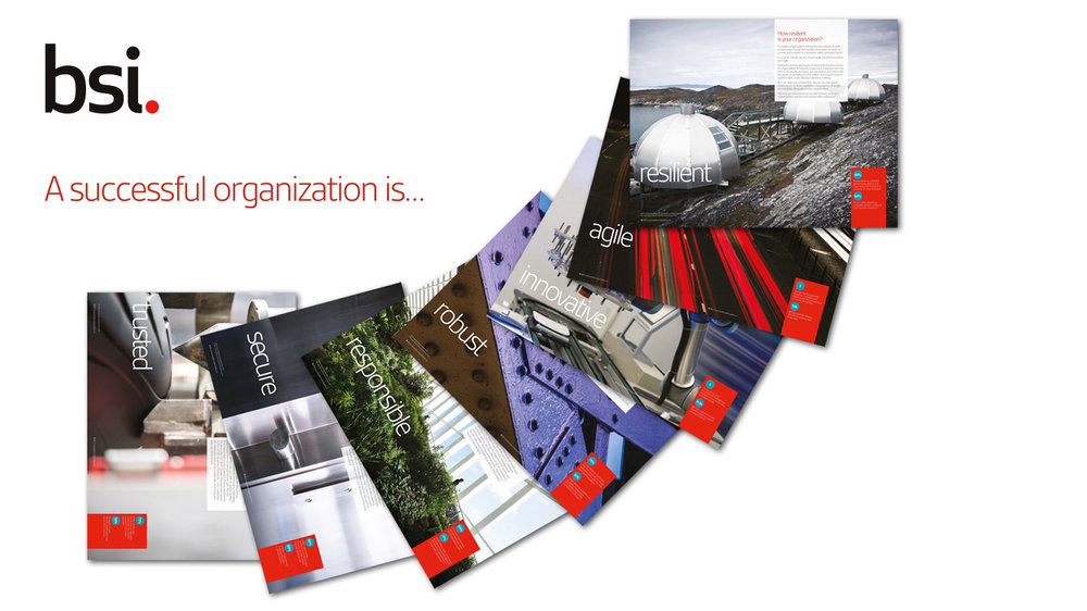 BSI brochure [1416 x 796].jpg