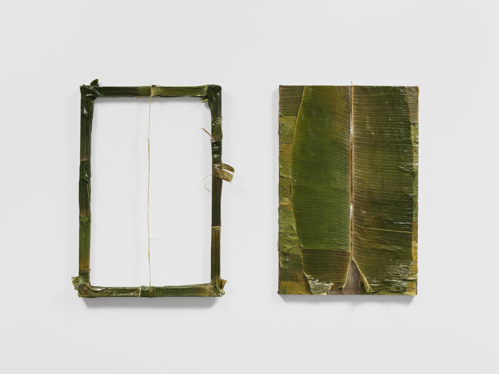 """Colgão Diptych""  Petrolatum on banana leaves  36""x60""  2017"