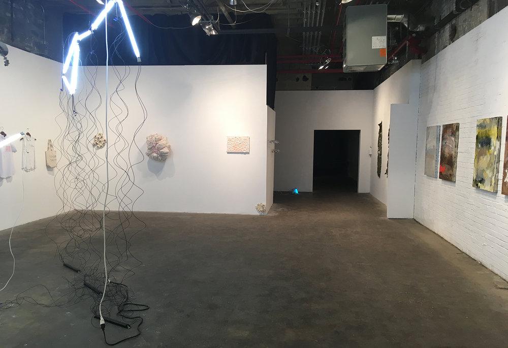 """""""Pioneer""""  1/12/18-1/21/18  Art Helix Gallery  Annie Bartholomew, Hyunjung Rhee, Chad Stayrook, Onel Naar"""