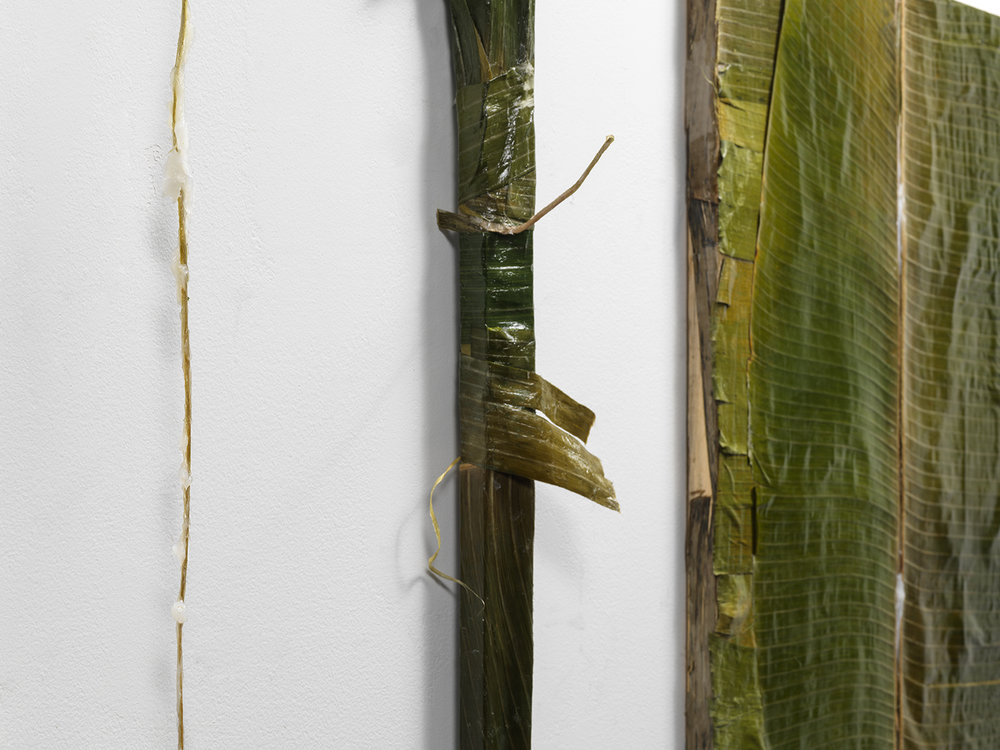 """Colgão Diptych"" (detail)  petrolatum (Vicks VapoRub) on plantain leaves lined with resin,  36 x 24 in. each  2017"