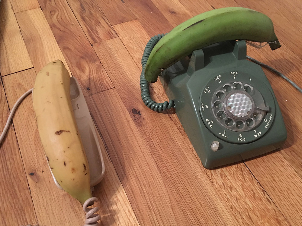 """Platanofono""  vintage phones and plantains with resin lining  dimensions variable  2017"