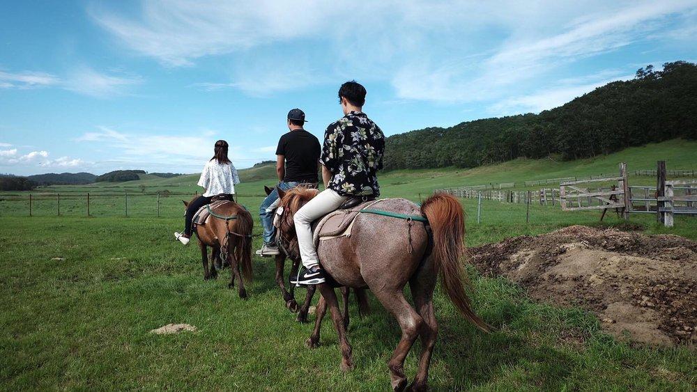 *乗馬体験