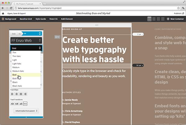 typecast screenshot