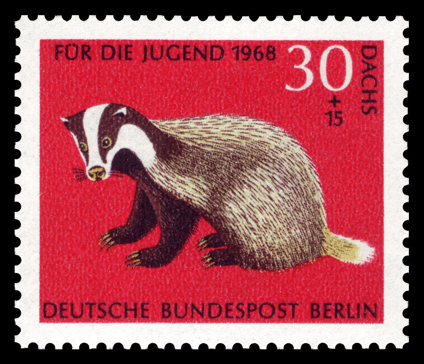 Badger Digest February 2016