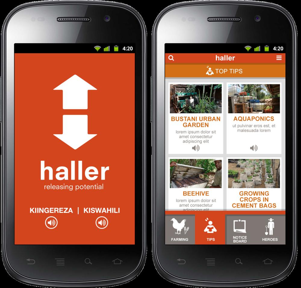haller.png
