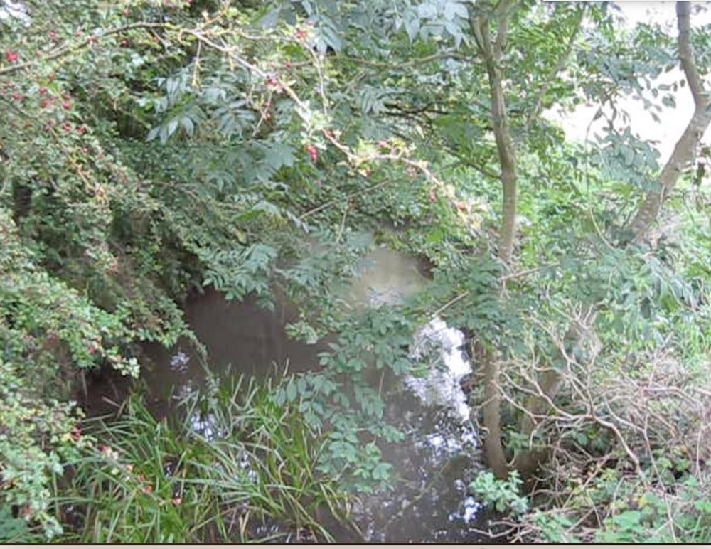 The river site at Newnham