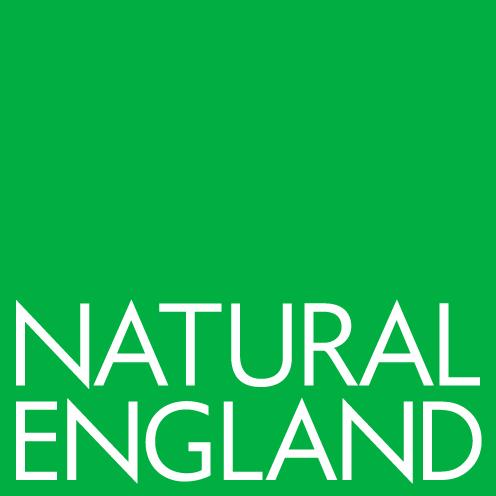 NatEng_logo_New-Green-RGB.jpg