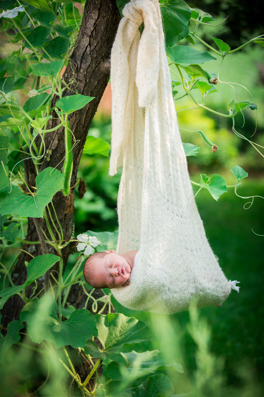 Baby-Quinn_Dukat-Photos-1005b.jpg