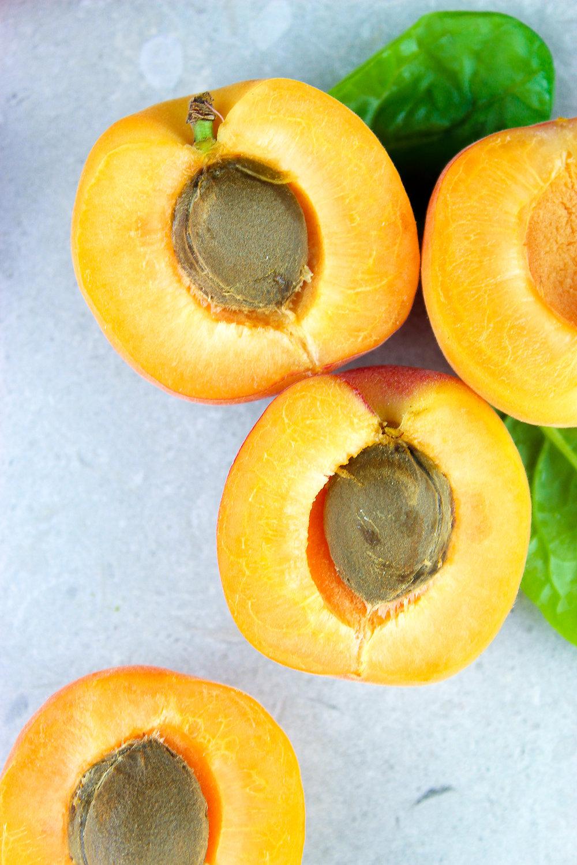 apricots-2.jpg