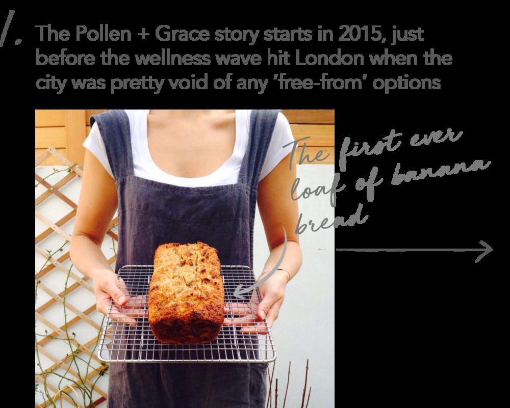 pollen grace timeline 2015 start 3.png