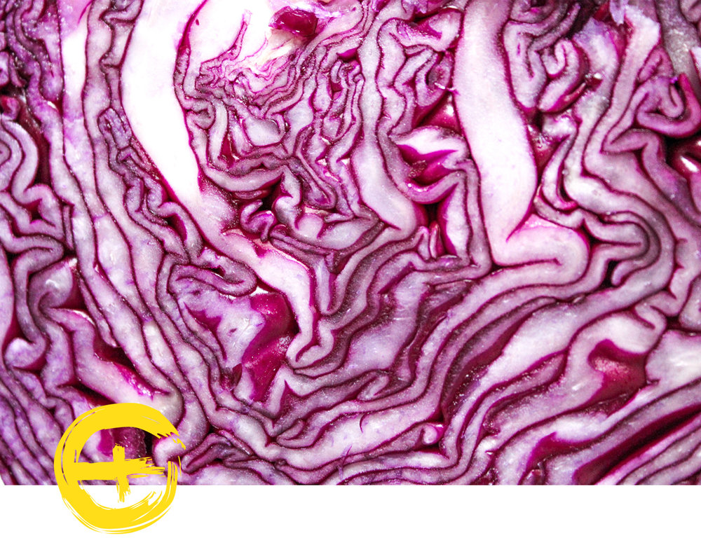 image red cabbage.jpg