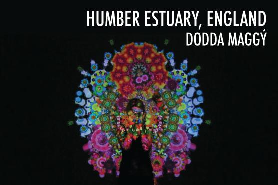 Dodda-Maggy-Web-Frontpage.png