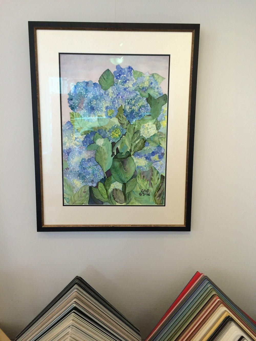 Hydrangeas - Framed