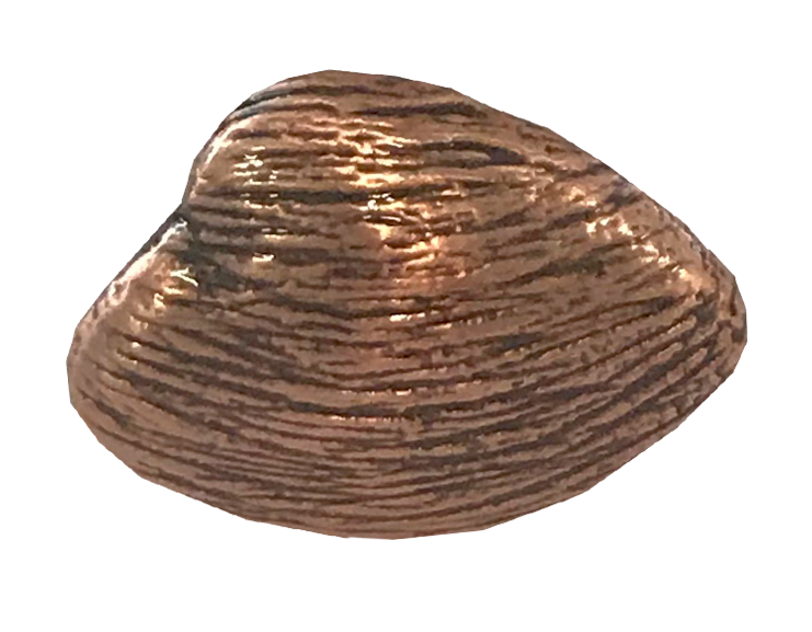 MS-9211-CLAM 1X1 COPPER.png