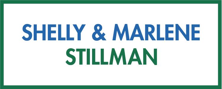 ISCD 2017-Sponsor logo-Stillman-01.jpg