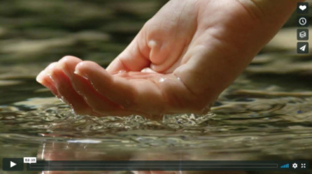 VideoStill-120617.jpg