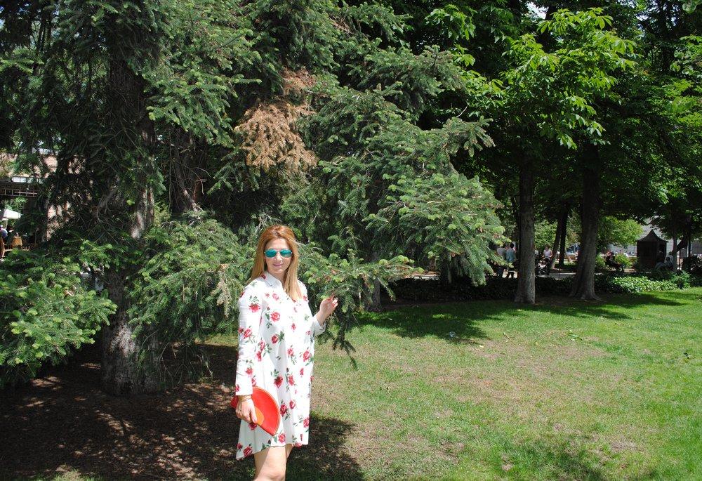 blouse dress 3