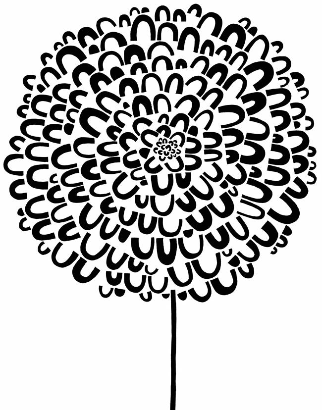 hydrangea.jpg
