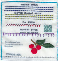 Completed EZ Stitch Sampler Project Example