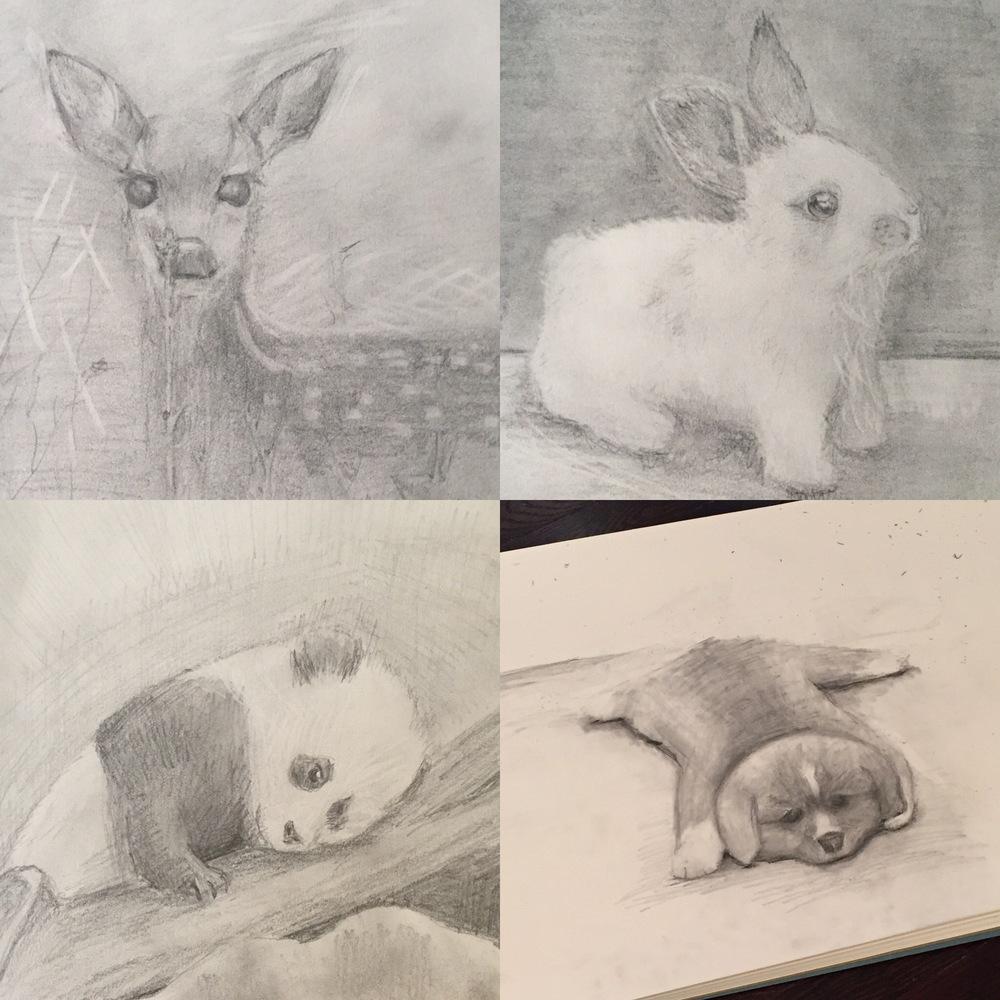 Animals, 2016