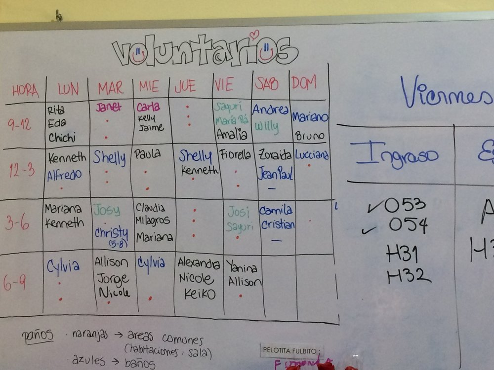 Volunteer Schedule.jpg