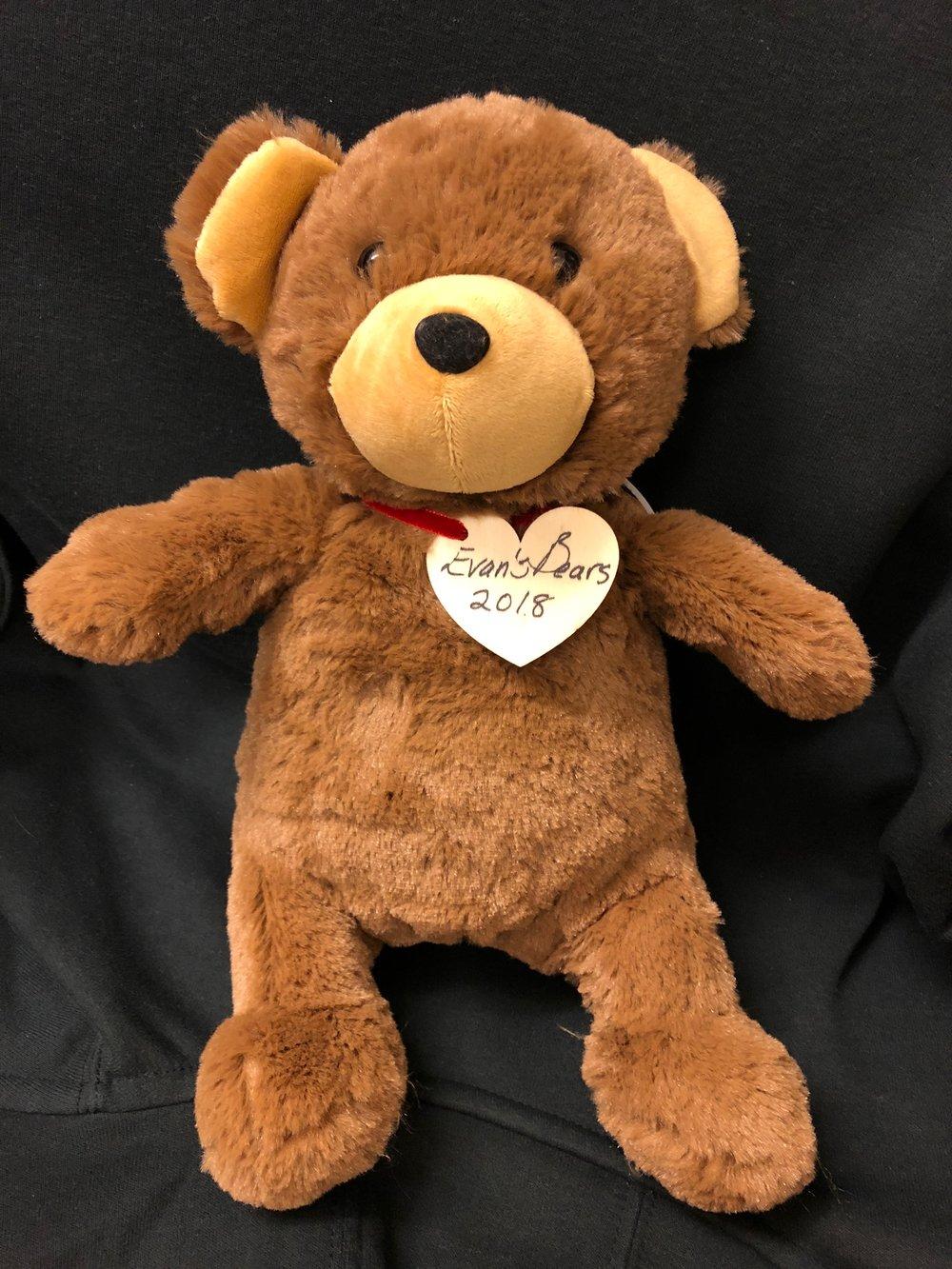 Evan's Bears 2.jpg