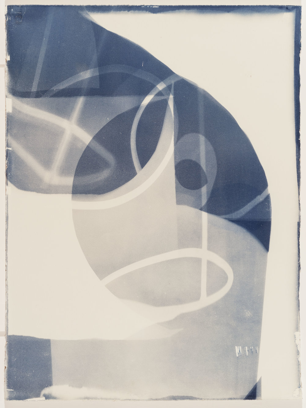 Harwood_Cyanotype_30x22_$500.jpg