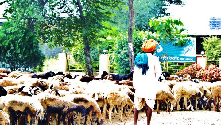 Rural West India
