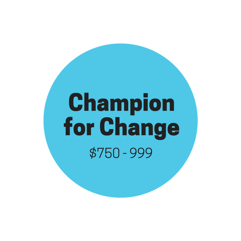 "ACCESSIVE ""CHAMPION FOR CHANGE""    $750-$999    Provides three years of sponsorship for student   Personal thank-you note from sponsored student  Quarterly organizational email updates  End-of-year updates on sponsored student's progress  Official Accessive ""CHAMPION FOR CHANGE"" donor t-shirt  Donor's name published and featured on the Accessive webpage  (optional)"