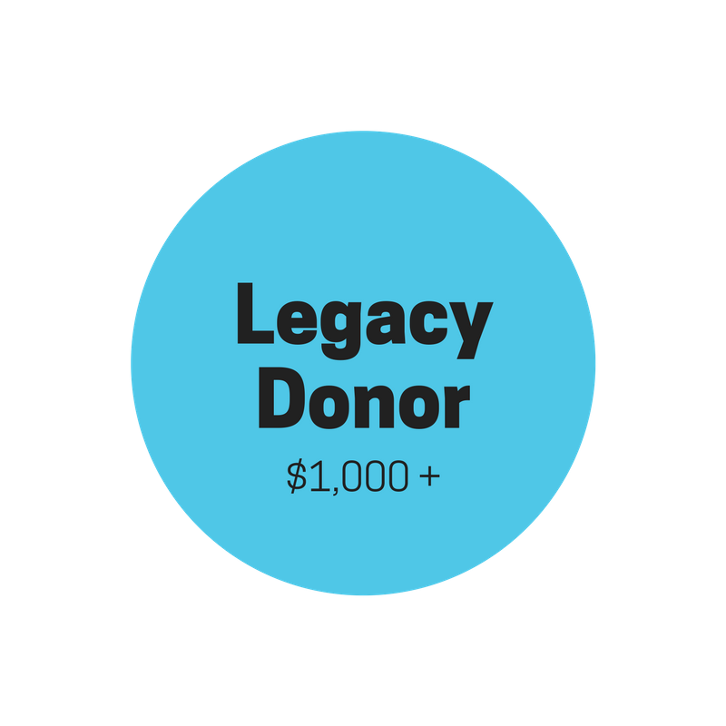 "ACCESSIVE ""LEGACY DONOR""     $1000+    Every $1000 dollars provides a student with a full FOUR-YEAR sponsorship (9th-12th)   Personal thank-you note from sponsored student  Quarterly organizational email updates  End-of-year updates on sponsored student's progress  Two (2) official Accessive ""Legacy Donors"" polo shirts  Donor's name featured on all printed and digital marketing material  (optional)   Donor's name published and featured on the Accessive webpage  (optional)"