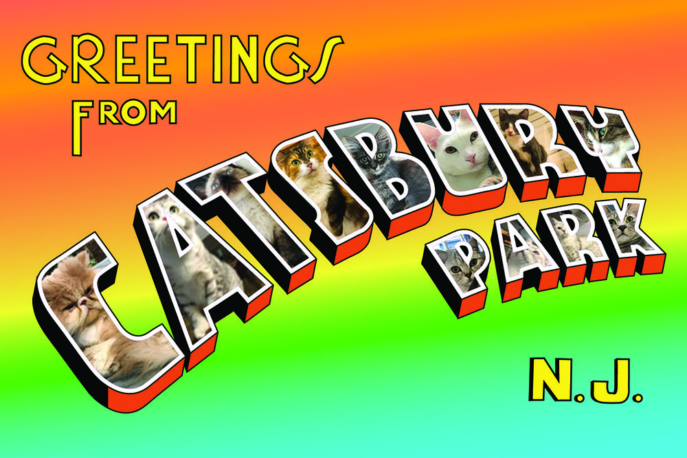 Catsbury_GreetingsCard_Webjpg