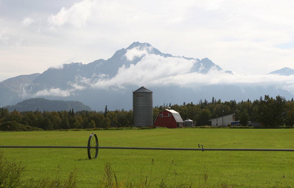 Matanuska Valley farm